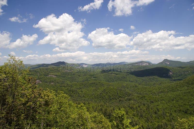 Bosque del Estado de Nantahala imagen de archivo