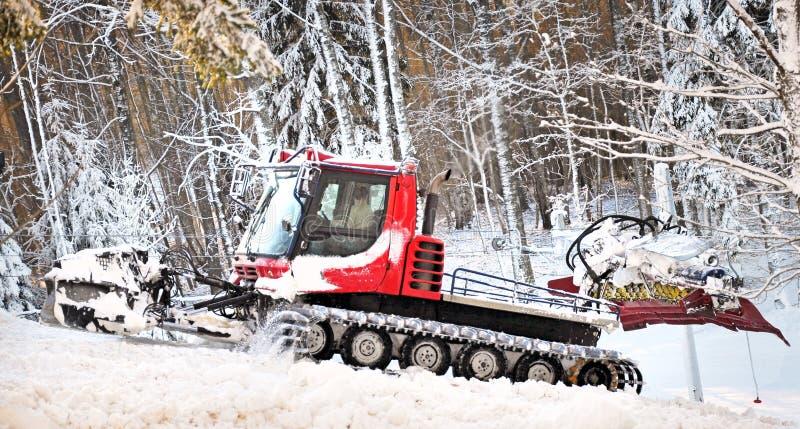 Bosque del invierno con el lanzador de nieve imágenes de archivo libres de regalías