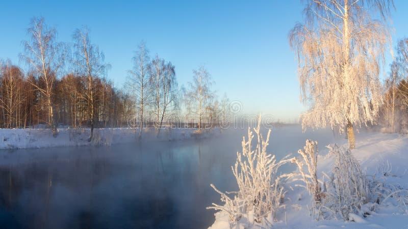 Bosque del invierno Nevado con los arbustos y los árboles de abedul en los bancos del río con la niebla, Rusia, los Urales, enero fotos de archivo libres de regalías