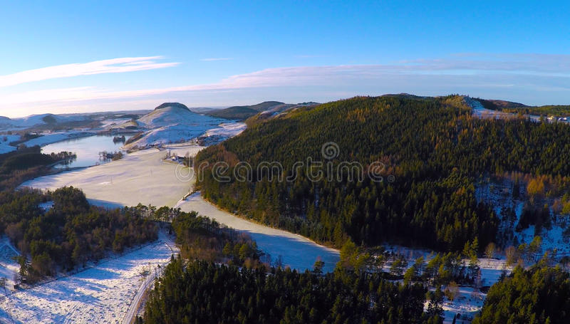 Bosque del invierno y tierras de labrantío nevadas imagen de archivo libre de regalías