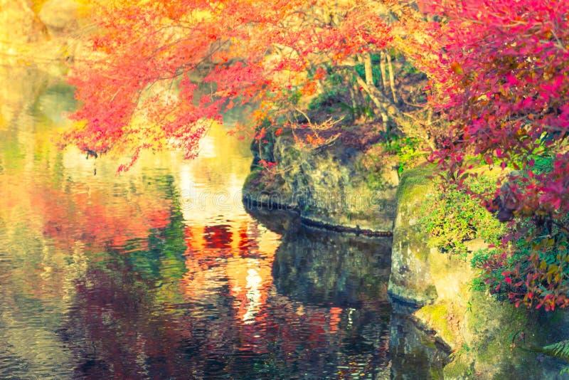 Bosque del otoño con el río (effe procesado imagen filtrado del vintage imágenes de archivo libres de regalías