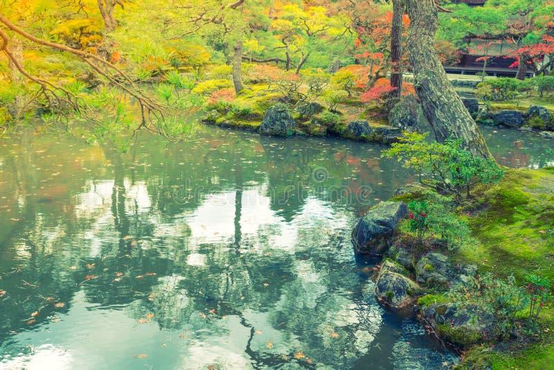 Bosque del otoño con el río (vintage procesado imagen filtrado imagen de archivo libre de regalías