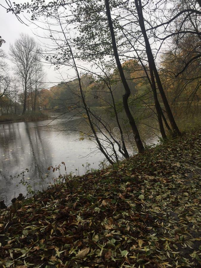 Bosque del otoño de Kenigsberg, lago, parque foto de archivo libre de regalías
