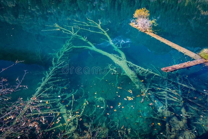 Bosque del otoño y paisaje del lago en Jiuzhaigou fotos de archivo libres de regalías