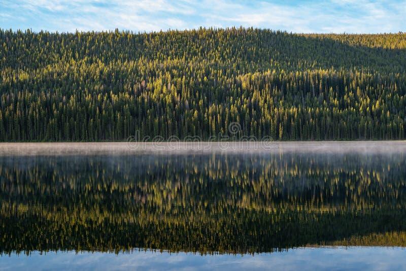 Bosque denso de los pinos ponderosa que reflejan en Stanley Lake en la salida del sol en las montañas del diente de sierra de Ida fotos de archivo libres de regalías