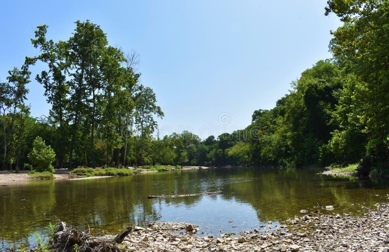 Bosque dos locustídeo, Oklahoma fotos de stock royalty free