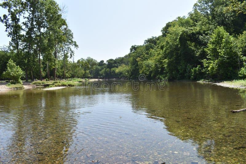Bosque dos locustídeo, Oklahoma imagem de stock