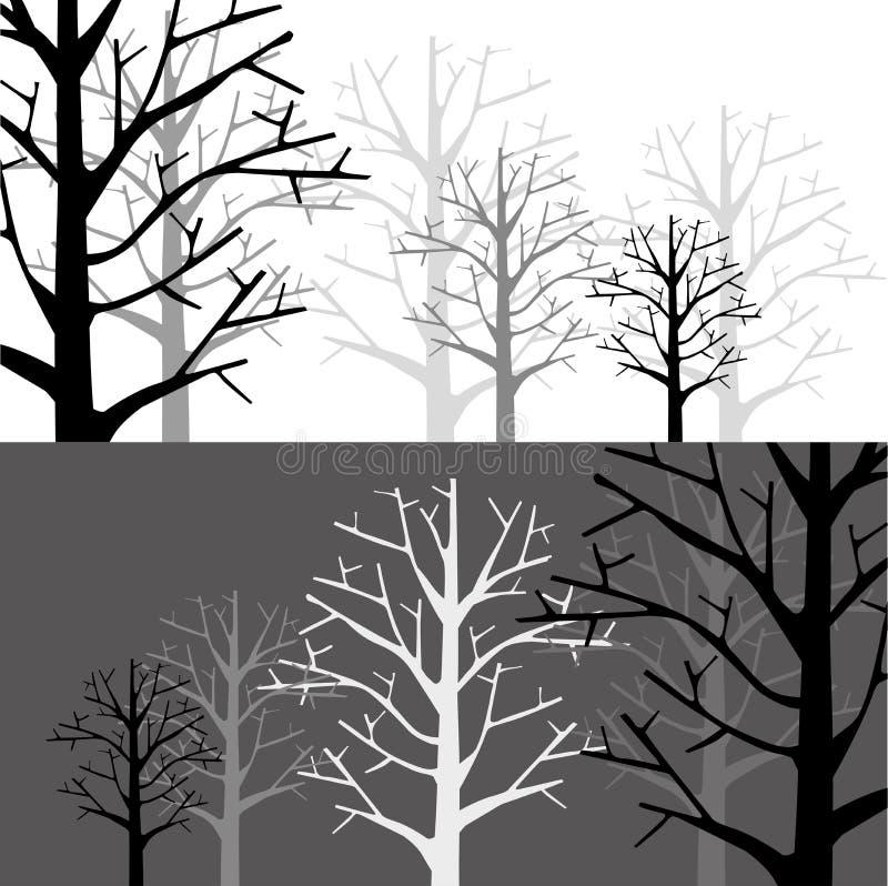 Bosque en dos monótonos libre illustration