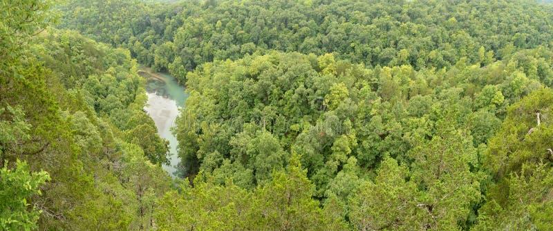 Bosque en el lago del Ozarks imagen de archivo