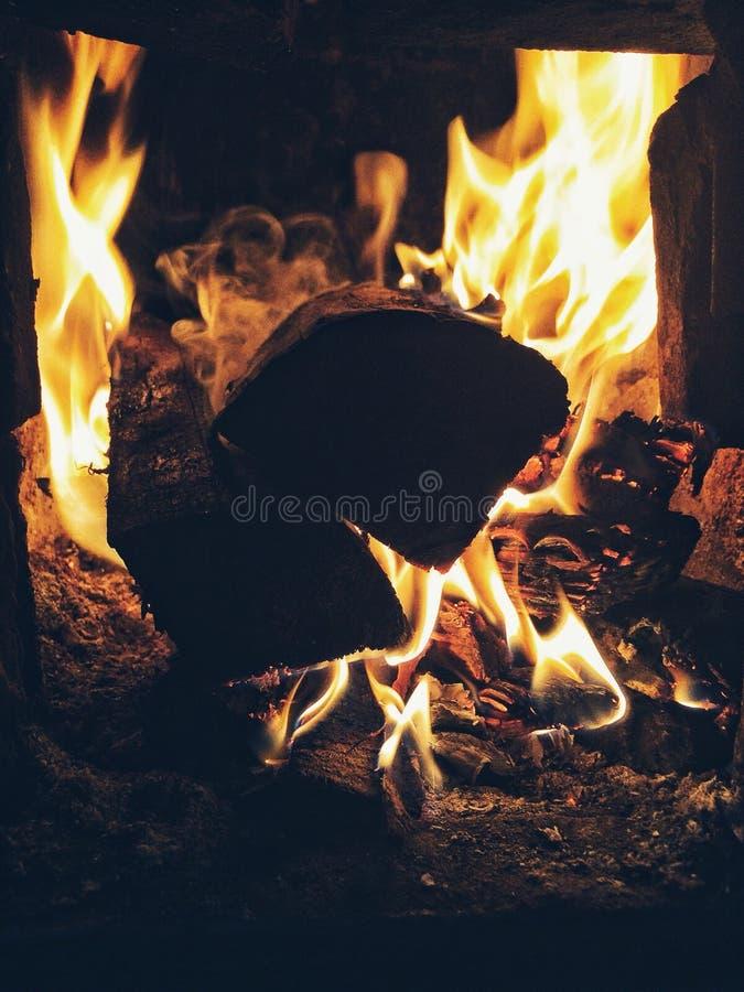 Bosque en fuego foto de archivo