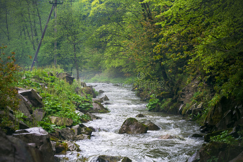 Bosque en la cascada de CaÑŒyanka fotos de archivo libres de regalías
