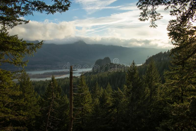 Bosque en la garganta del río Columbia en la puesta del sol Viaje en Washington y Oregon imagen de archivo libre de regalías