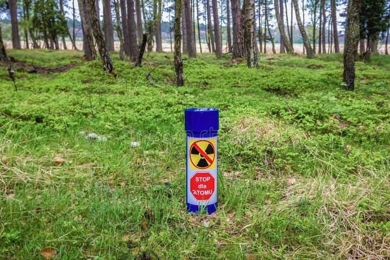 Bosque en Polonia imagen de archivo