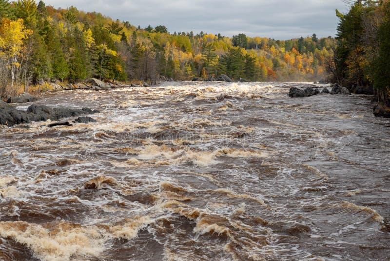 Bosque escénico del otoño a lo largo de los rápidos de precipitación del St Louis River en Jay Cooke State Park en los rápidos se fotos de archivo
