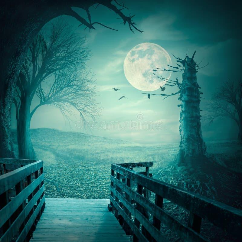 Bosque fantasmagórico en el claro de luna como contexto de Halloween fotos de archivo