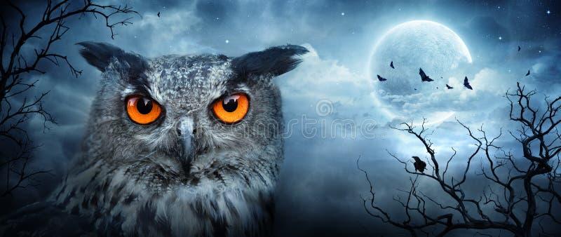Bosque fantasmagórico enojado de Eagle Owl At Moonlight In The imagen de archivo libre de regalías