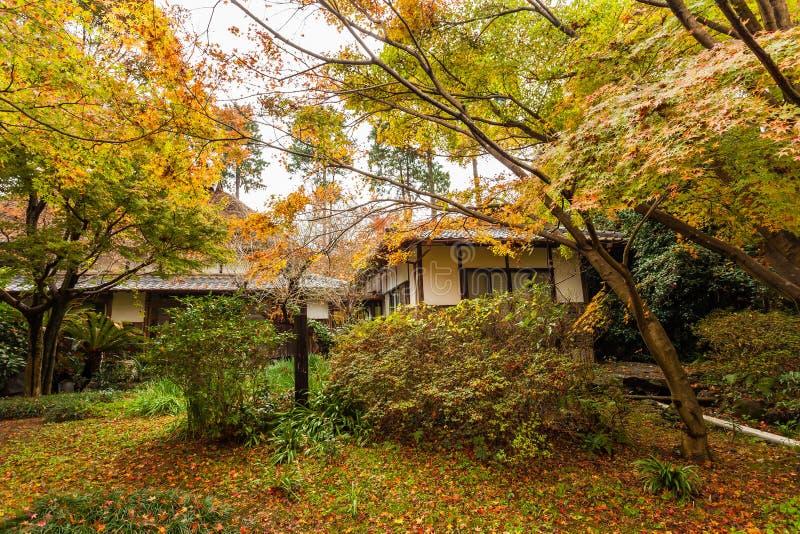 Bosque hermoso del otoño con la cabina imágenes de archivo libres de regalías