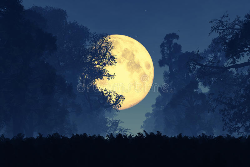 Bosque mágico misterioso del cuento de hadas de la fantasía en la noche en la Luna Llena imagenes de archivo