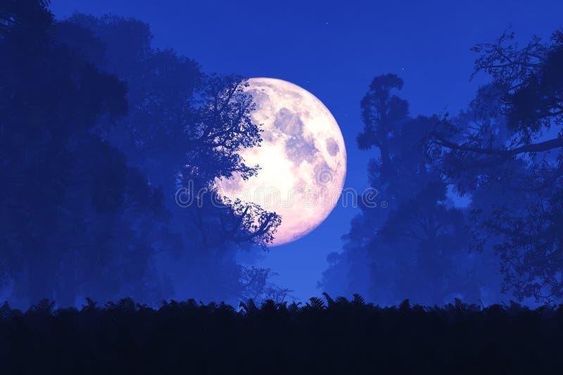 Bosque mágico misterioso del cuento de hadas de la fantasía en la noche en la Luna Llena foto de archivo libre de regalías