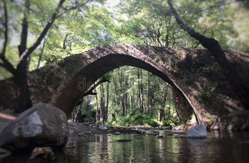 Bosque medieval del puente fotografía de archivo