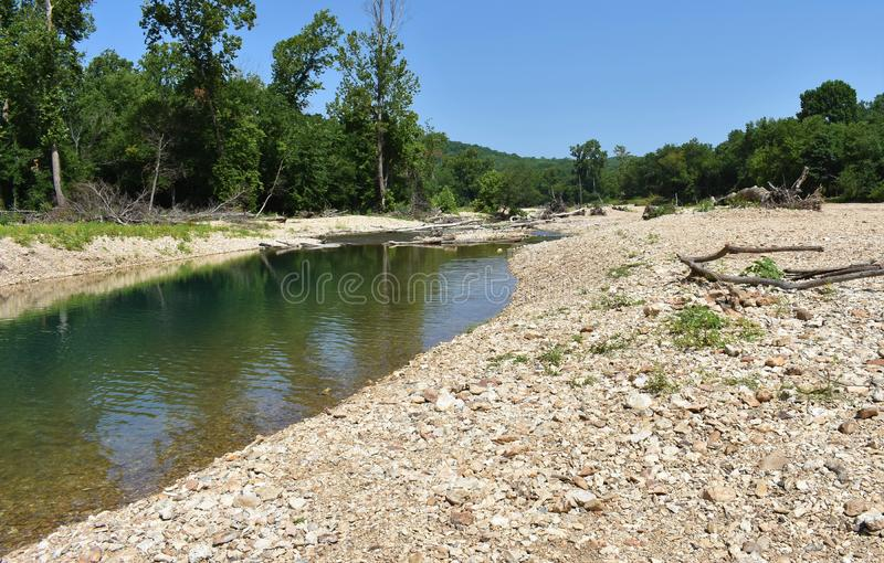 Bosque Oklahoma dos locustídeo fotos de stock