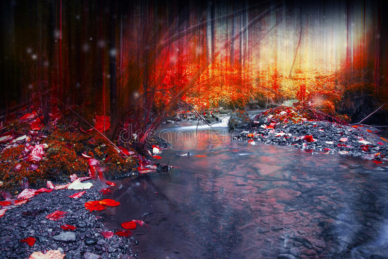 Bosque oscuro misterioso con la magia, el fluir surrealista de la cala foto de archivo