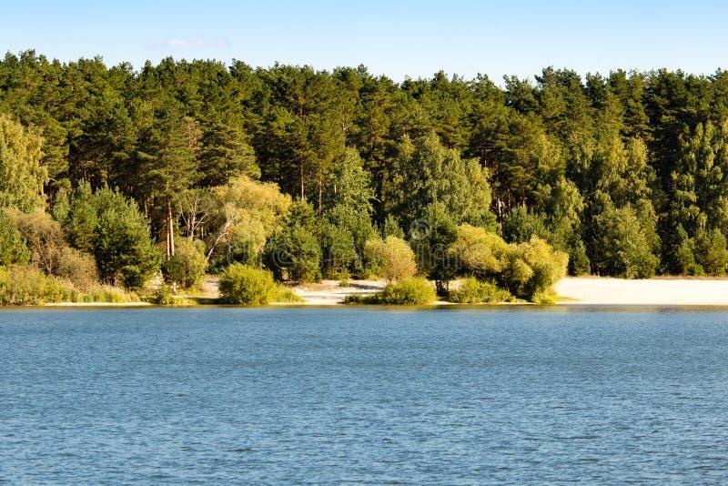 Bosque por el lago en el aire abierto imagenes de archivo