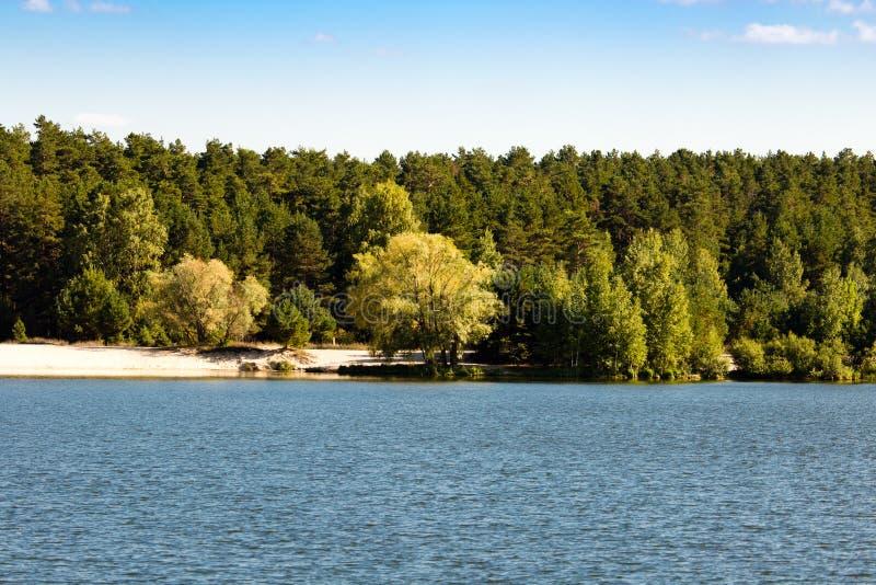 Bosque por el lago en el aire abierto imágenes de archivo libres de regalías