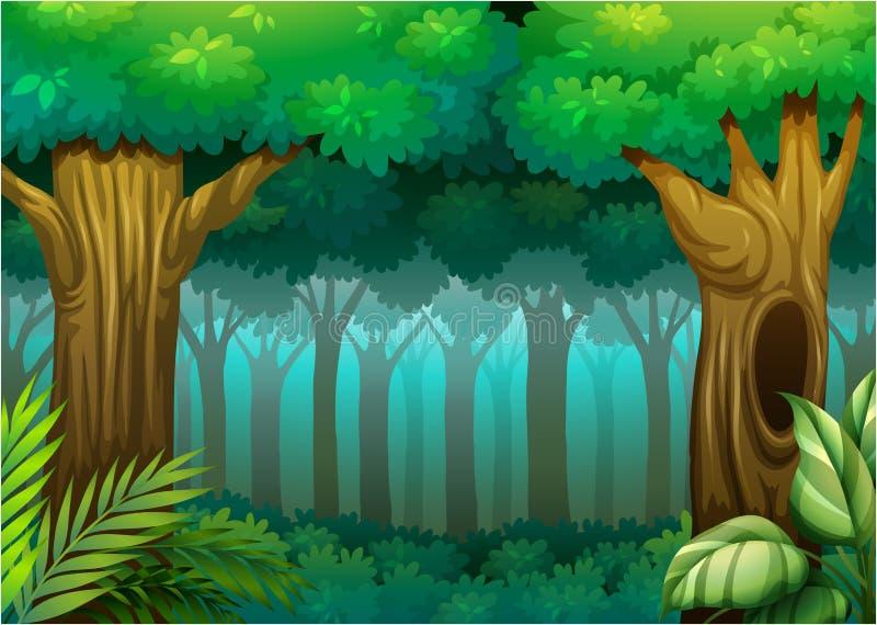 Bosque profundo ilustración del vector