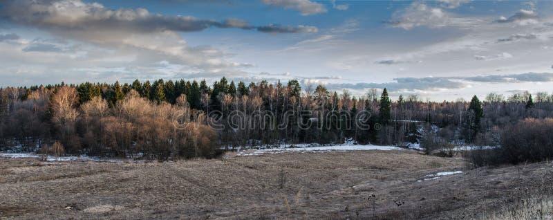 Bosque, puesta del sol y nubes, sol foto de archivo libre de regalías