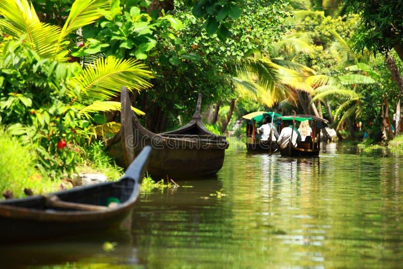 Bosque tropical de la palmera en el remanso de Kochin, Kerala, la India fotos de archivo