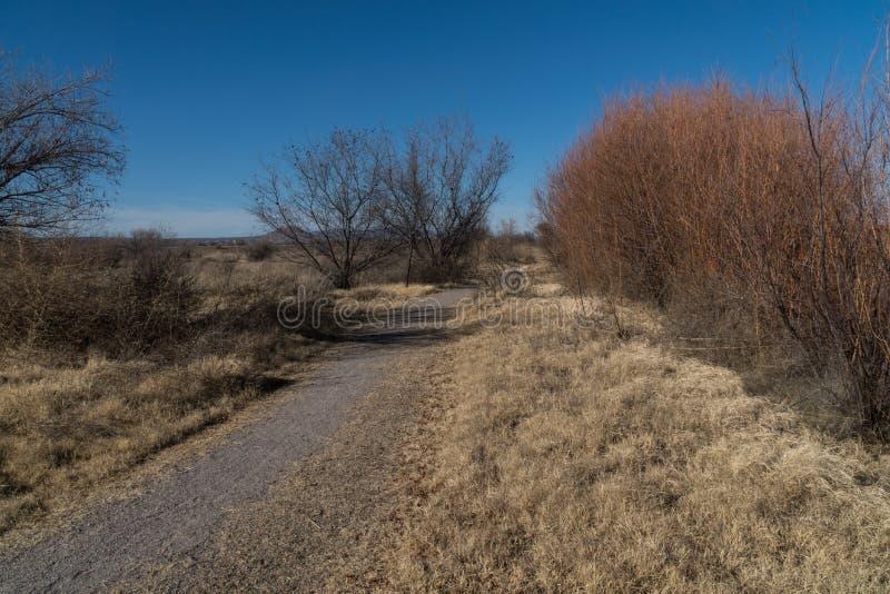 Bosque van de Mesillavallei Park, New Mexico stock foto's