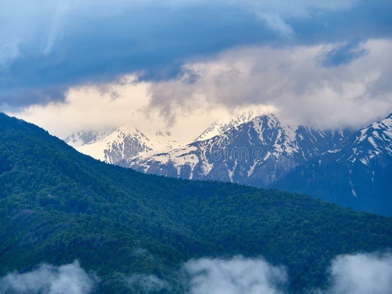 Bosque verde en el fondo de altas montañas nevosas imagenes de archivo