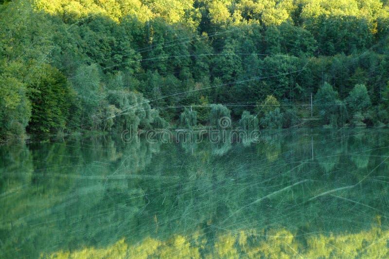 Download Bosque Y Lago Del Otoño Del Vintage Imagen de archivo - Imagen de paisaje, follaje: 44850581