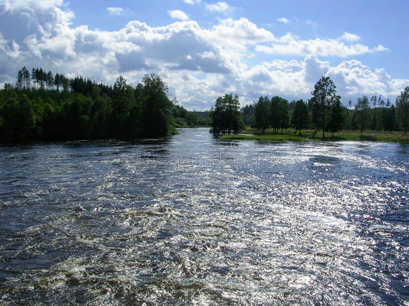 Bosque y lago en Gotemburg Suecia foto de archivo