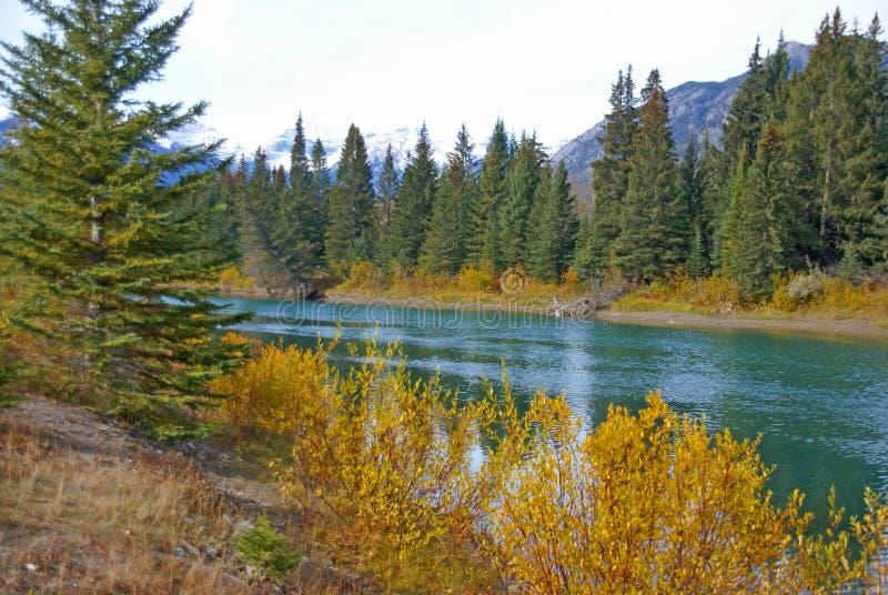 Bosque y montaña, paisaje del otoño imagen de archivo libre de regalías