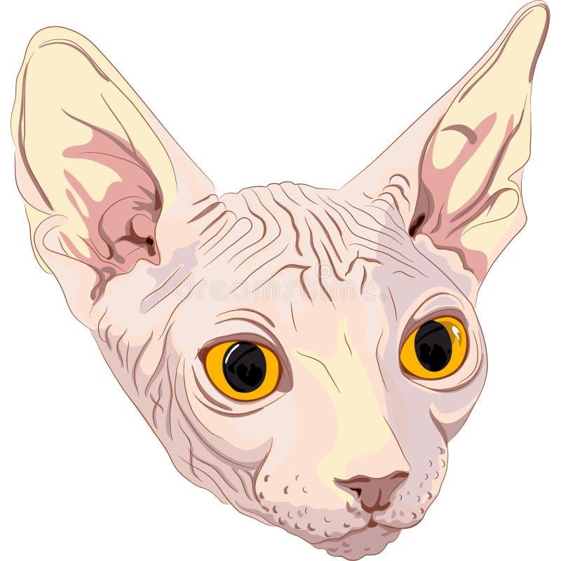 Bosqueje la casta Sphynx del gato stock de ilustración