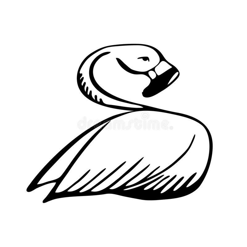 Bosquejo blanco y negro del flamenco ilustración del vector