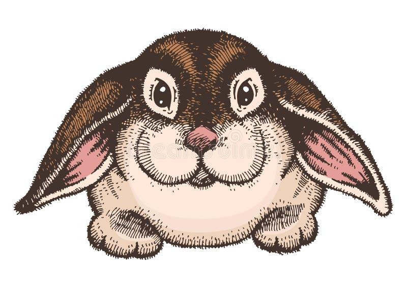 Bosquejo coloreado dibujado mano del conejo de pascua ilustración del vector