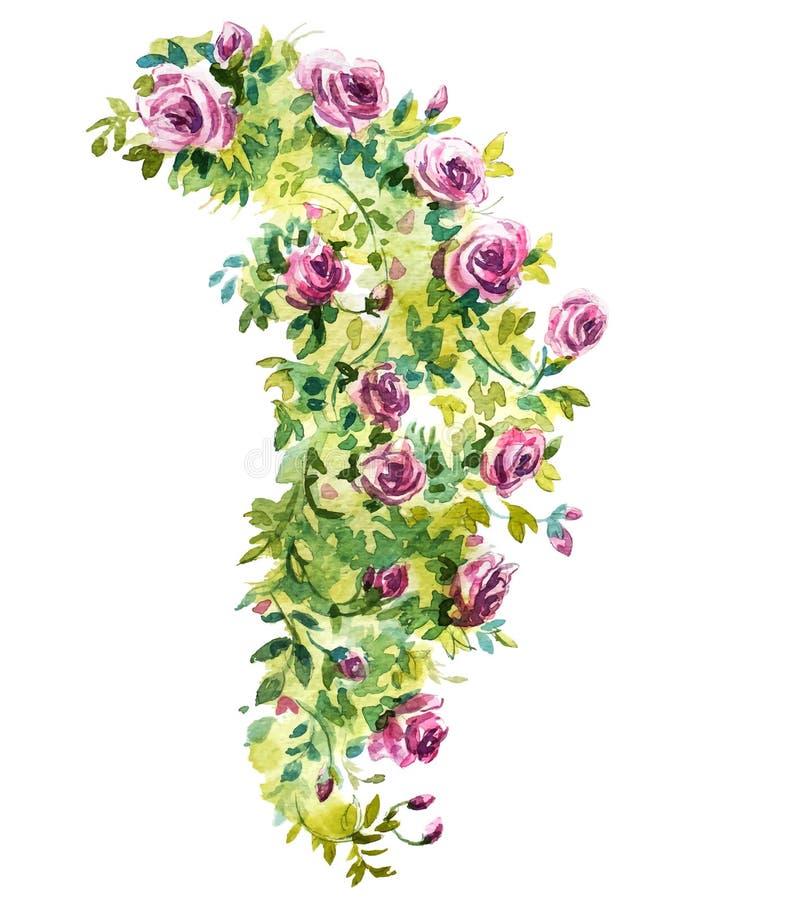 Bosquejo de la acuarela de Rose arbusto ilustración del vector