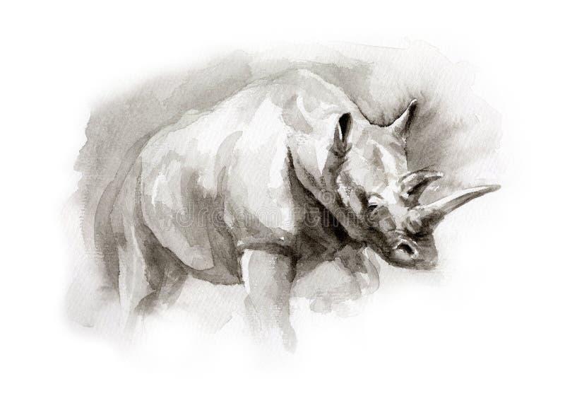 Bosquejo de la acuarela del rinoceronte fotografía de archivo