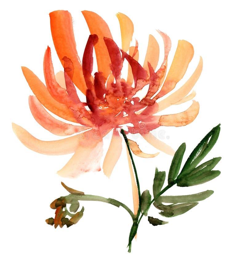 Bosquejo De La Flor Fotografía de archivo libre de regalías