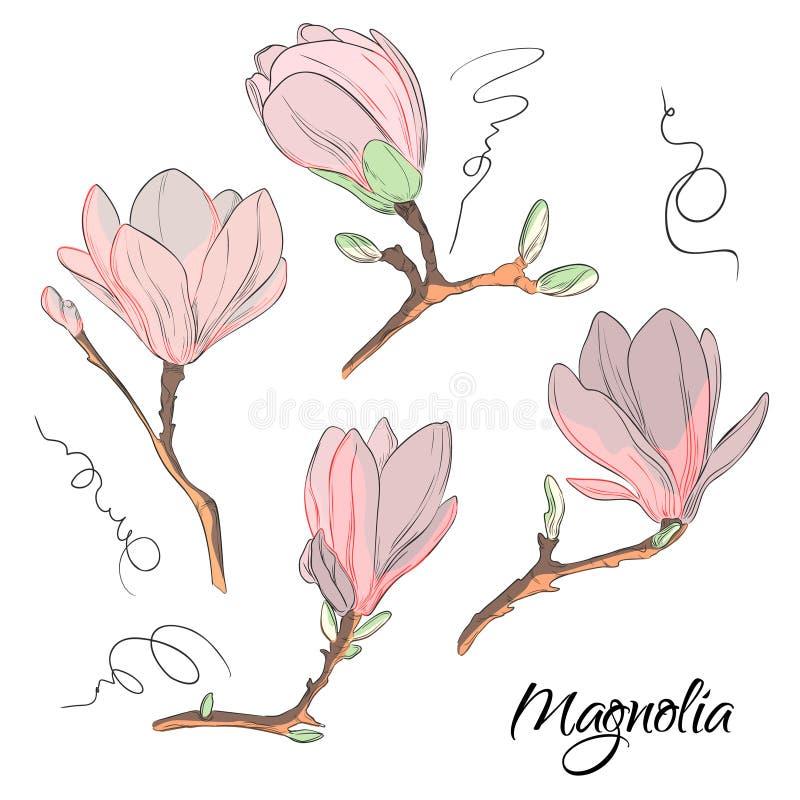 Bosquejo de la flor de la magnolia Impresión floral botánica de la repetición Elementos modernos de la naturaleza stock de ilustración
