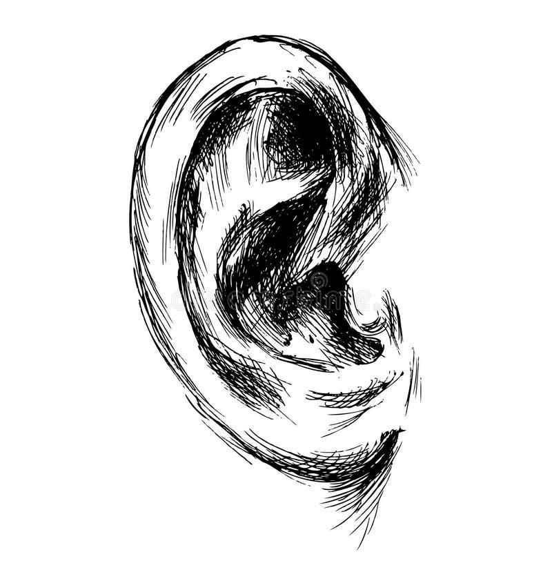 Bosquejo de la mano del oído humano libre illustration