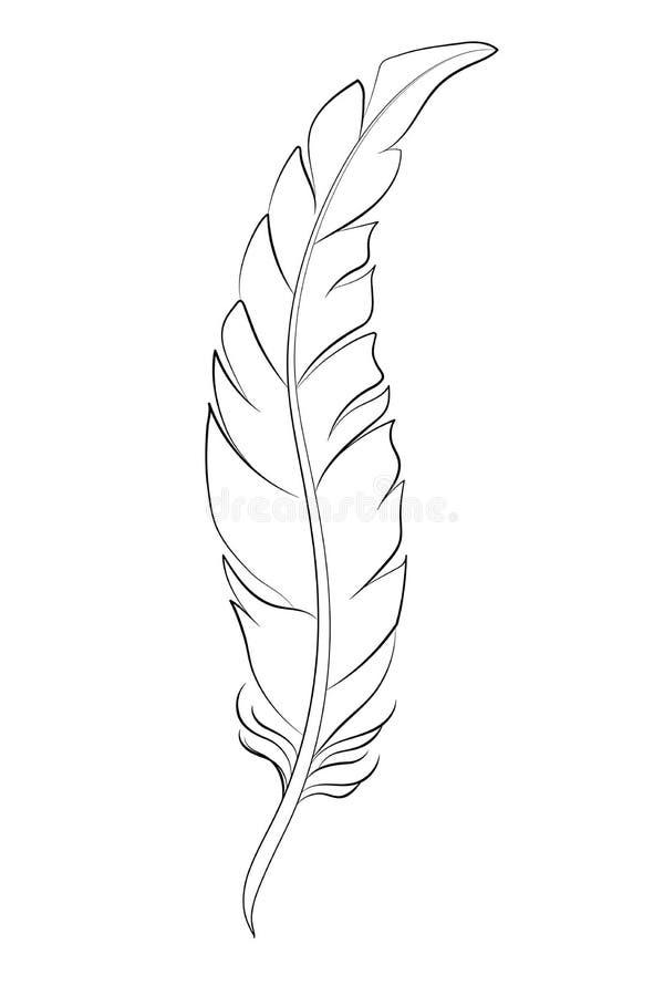 Bosquejo De La Pluma Para Colorear Ilustración Del Vector