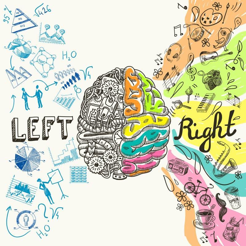 Bosquejo de los hemisferios del cerebro stock de ilustración