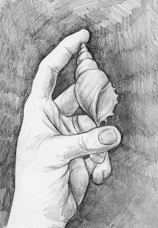 Bosquejo de una mano con la cáscara del mar ilustración del vector