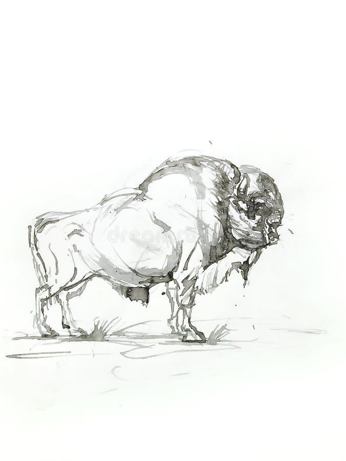 Bosquejo del bisonte ilustración del vector