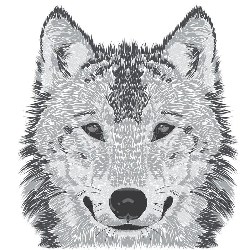 Bosquejo del bozal del lobo stock de ilustración
