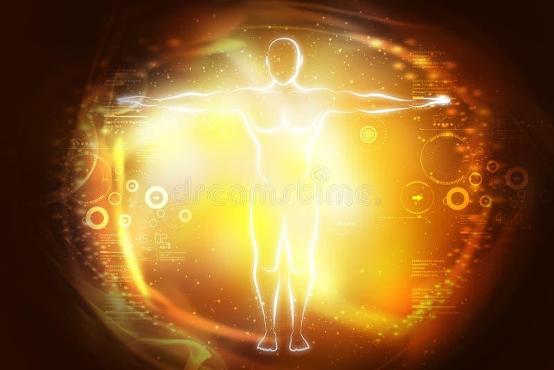 Bosquejo del cuerpo humano en luz ilustración del vector